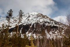 Paisaje hermoso de la montaña del invierno Imagenes de archivo