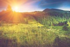 Paisaje hermoso de la montaña del verano en la sol Fotografía de archivo