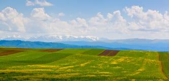 Paisaje hermoso de la montaña, el Cáucaso Fotos de archivo