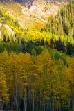 Paisaje hermoso de la montaña en Aspen, telururo, Colorado foto de archivo