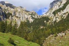 Paisaje hermoso de la montaña en verano imágenes de archivo libres de regalías