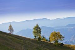 Paisaje hermoso de la montaña y árboles aislados Foto de archivo