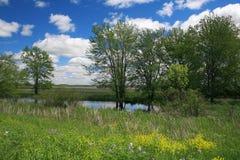 Paisaje hermoso de la naturaleza - charca, prado, árboles Foto de archivo libre de regalías
