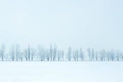 Paisaje hermoso de la naturaleza del invierno Foto de archivo libre de regalías