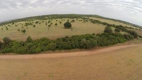 Paisaje hermoso de la naturaleza y del cultivo - vuelo aéreo, Mallorca almacen de video