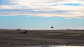 Paisaje hermoso de la orilla de mar durante la bajamar en la estación del otoño almacen de metraje de vídeo