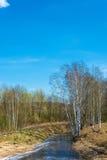 Paisaje hermoso de la primavera con el río Imagenes de archivo