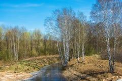 Paisaje hermoso de la primavera con el río Fotografía de archivo libre de regalías