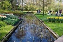 Paisaje hermoso de la primavera con flores y un lago en el parque Fotografía de archivo