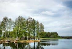 Paisaje hermoso de la primavera con un lago y los árboles de abedul Imagen de archivo