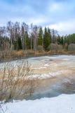 Paisaje hermoso de la primavera con un pequeño lago cubierto con hielo Imágenes de archivo libres de regalías