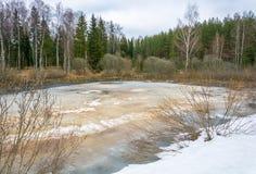 Paisaje hermoso de la primavera con un pequeño lago cubierto con hielo Foto de archivo