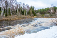 Paisaje hermoso de la primavera con un pequeño lago cubierto con hielo Fotografía de archivo libre de regalías