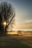 Paisaje hermoso de la puesta del sol que brilla a través de árboles sobre hermoso Imagen de archivo libre de regalías
