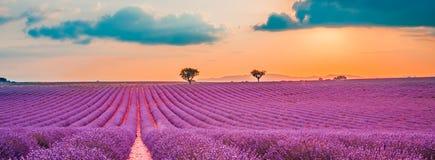 Paisaje hermoso Paisaje de la puesta del sol del verano del campo de la lavanda del panorama cerca de Valensole Provence, Francia fotografía de archivo
