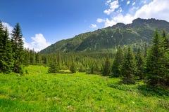 Paisaje hermoso de las montañas de Tatra Fotos de archivo libres de regalías