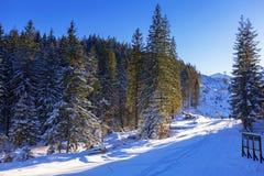 Paisaje hermoso de las montañas de Tatra en el invierno nevoso Fotos de archivo libres de regalías
