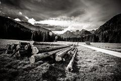 Paisaje hermoso de las montañas de Tatry en blanco y negro Imágenes de archivo libres de regalías