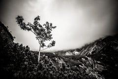 Paisaje hermoso de las montañas de Tatry en blanco y negro Imagenes de archivo