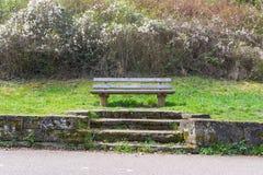Paisaje hermoso de madera Sit Down Grass Nature Welc del banco de parque Imágenes de archivo libres de regalías