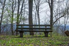 Paisaje hermoso de madera Sit Down Grass Nature Welc del banco de parque Imagen de archivo libre de regalías