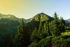 Paisaje hermoso de montañas rumanas Negoiu Porumbacu de Sus Cabaña Negoiu Sibiu Día de fiesta i de Forest Amazing fotografía de archivo libre de regalías