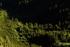 Paisaje hermoso de montañas rumanas Negoiu Porumbacu de Sus Cabaña Negoiu Sibiu Día de fiesta i de Forest Amazing foto de archivo