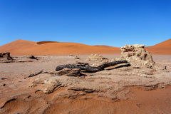 Paisaje hermoso de Sossusvlei de Death Valley Imágenes de archivo libres de regalías