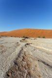 Paisaje hermoso de Sossusvlei de Death Valley, Namibia Fotos de archivo