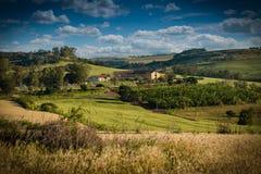 Paisaje hermoso de una zona rural con las plantaciones imágenes de archivo libres de regalías