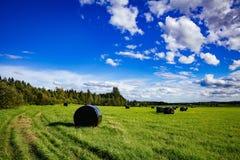 Paisaje hermoso del campo Balas redondas de la paja del plástico negro en campo verde Fotos de archivo
