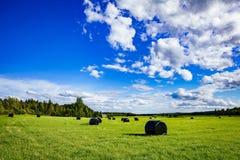 Paisaje hermoso del campo Balas redondas de la paja del plástico negro en campo verde Imagenes de archivo