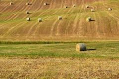 Paisaje hermoso del campo cerca de Siena en Toscana, Italia La paja redonda embala bolas del heno en campos y cielo azul cosechad Imagen de archivo libre de regalías