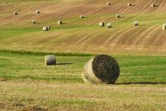 Paisaje hermoso del campo cerca de Siena en Toscana, Italia La paja redonda embala bolas del heno en campos y cielo azul cosechad Imágenes de archivo libres de regalías