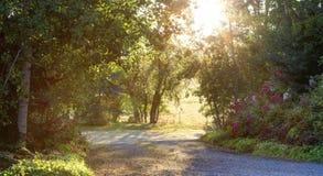 Paisaje hermoso del campo de la mañana Fotografía de archivo libre de regalías