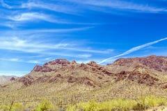 Paisaje hermoso del desierto de la montaña con los cactus Imagen de archivo