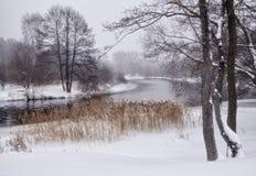 Paisaje hermoso del invierno Foto de archivo