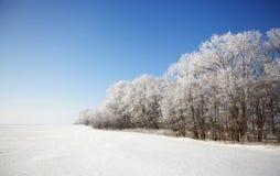 Paisaje hermoso del invierno Imagenes de archivo