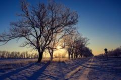 Paisaje hermoso del invierno Imagen de archivo