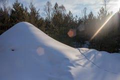 Paisaje hermoso del invierno con el bosque, las colinas de la nieve y las piceas separadas colina de la nieve en los rastros del  Imagen de archivo