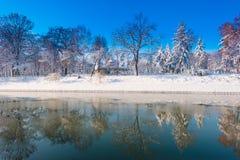 Paisaje hermoso del invierno con nieve y árboles frescos en un parque Imagen de archivo