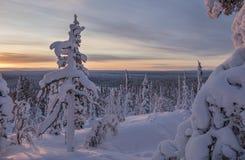Paisaje hermoso del invierno de Finlandia septentrional Foto de archivo