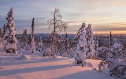 Paisaje hermoso del invierno de Finlandia septentrional Fotos de archivo
