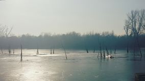 Paisaje hermoso del invierno el día soleado Fotografía de archivo libre de regalías