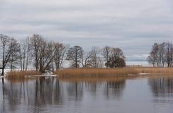 Paisaje hermoso del invierno en la orilla del golfo finlandés en P imagenes de archivo