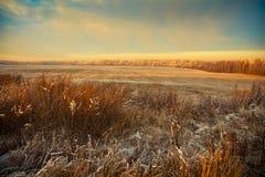 Paisaje hermoso del invierno en la puesta del sol Fotografía de archivo libre de regalías