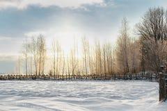 Paisaje hermoso del invierno en la puesta del sol Imágenes de archivo libres de regalías