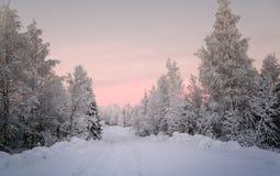 Paisaje hermoso del invierno en Laponia Finlandia foto de archivo libre de regalías