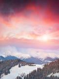 Paisaje hermoso del invierno en las montañas cárpatas Fotos de archivo