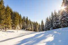 Paisaje hermoso del invierno en las montañas Cele de la Feliz Año Nuevo Fotos de archivo libres de regalías